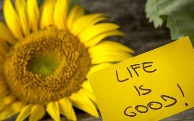 Life hacks for Positive Living